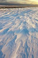 Zastrugi, wind blown snow on Barter Island, Beaufort sea in the distance, arctic, Alaska
