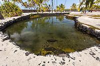 Heleipalala pond in Pu'uhonua o Honaunau place of refuge national historical park, Big Island, Hawaii