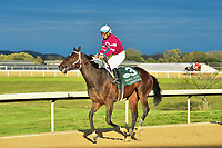 HOT SPRINGS, AR - APRIL 14: Oaklawn Park on April 14, 2018 in Hot Springs,Arkansas. #3 Tenfold with jockey Victor Espinoza  (Photo by Ted McClenning/Eclipse Sportswire/Getty Images)