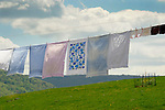 Clothesline in Spring.