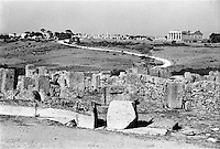 Parco archeologico di Selinunte (Castelvetrano, Trapani).  Rovine dell'antica città greca --- Archaeological park of Selinunte (Castelvetrano, Trapani),  Ruins of the ancient Greek city