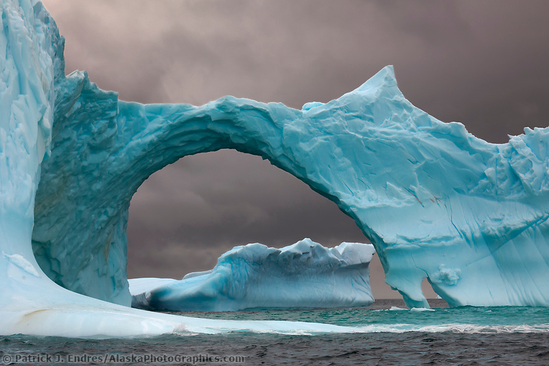 Floating iceberg, Cierva Cove, western side of the Antarctic Peninsula.