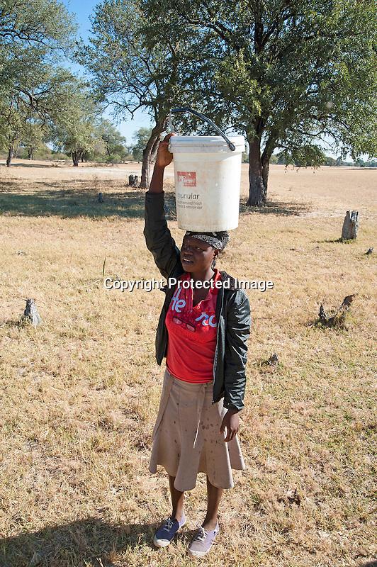 Village Woman Carrying Water in Bucket on Head in Ngamo Village in Zimbabwe