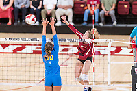 STANFORD, CA -- September 26, 2018. The Stanford Cardinal women's volleyball team defeats the UCLA Bruins  3-0 at Maples Pavilion.
