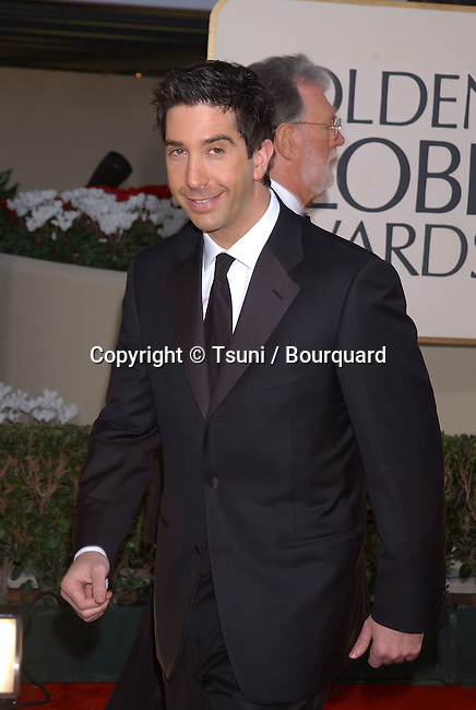 David Schwimmer arrives at the 59th Annual Golden Globe Awards at the Beverly Hilton Hotel in Beverly Hills, Calif., Sunday, January 20, 2002.           -            SchwimmerDavid02.jpg
