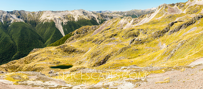 Alpine tarn with St. Arnaud Ranges in background, Nelson Lake National Park, South Island, New Zealand, NZ