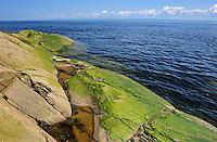 Rocky shoreline of Gulf of St. Lawrence<br /> Cap-de-Bon-Désir<br /> Quebec<br /> Canada