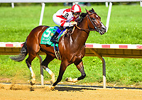 STANTON, DE - JULY 15: Songbird #5, ridden by Mike Smith, outkicks Martini Glass #2 (not pictured), ridden by Jose Ferrer , to win the Delaware Handicap on Delaware Handicap Day on July 8, 2017 at Delaware Park Race Track in Stanton, Delaware. (Photo by Scott Serio/Eclipse Sportswire/Getty Images)