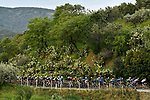Action from Stage 2 of Il Giro di Sicilia running 236km from Capo d'Orlando to Palermo, Italy. 4th April 2019.<br /> Picture: LaPresse/Fabio Ferrari | Cyclefile<br /> <br /> <br /> All photos usage must carry mandatory copyright credit (© Cyclefile | LaPresse/Fabio Ferrari)
