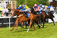 Winner of The Smith & Williamson Handicap (Class 6)     Ablaze ridden by Edward Greatex and trained by Luara Mongon during Afternoon Racing at Salisbury Racecourse on 17th May 2018