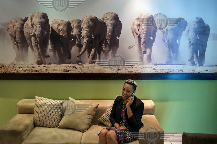 A woman talking on the telephone in the Botswana tourist office sitting beneath a huge photograph of a herd of elephants.