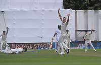 Kyle Jamieson appeals during day one of the International Test Cricket match between the New Zealand Black Caps and India at the Basin Reserve in Wellington, New Zealand on Friday, 21 February 2020. Photo: Dave Lintott / lintottphoto.co.nz