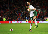 (L-R) James McClean of Ireland celebrates with team captain David Meyler during the FIFA World Cup Qualifier Group D match between Wales and Republic of Ireland at The Cardiff City Stadium, Wales, UK. Monday 09 October 2017