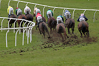 The field races down the hill in the European Breeders Fund National Hunt Novices Hurdle