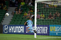 7th February 2020; HBF Park, Perth, Western Australia, Australia; A League Football, Perth Glory versus Wellington Phoenix; Liam Reddy of the Perth Glory dives to save a Wellington shot on goal