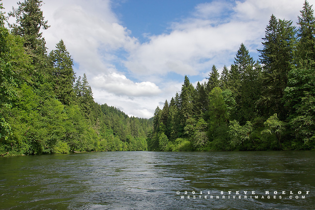 Lush vegetation lines the free-flowing Sandy River, Oregon.