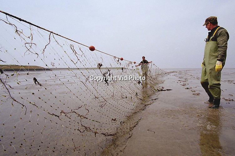 Foto: VidiPhoto..DEN OEVER - Het blijkt een gat in de recreatiemarkt. Vrijwel elke dag trekt visserman Jan Poortman met kleine groepen mensen de Waddenzee op om het ambachtelijk vissen te beoefenen. De toeristen helpen met het lichten van de fuiken, het zetten en leeghalen van het staande want en het schoonmaken van de vis. Het dagje ambachtelijk vissen is zo populair dat voor dit jaar alle weekenden al volgeboekt zijn. Foto: Het staande want op het droogvallende deel van het Wad wordt geinspecteerd.