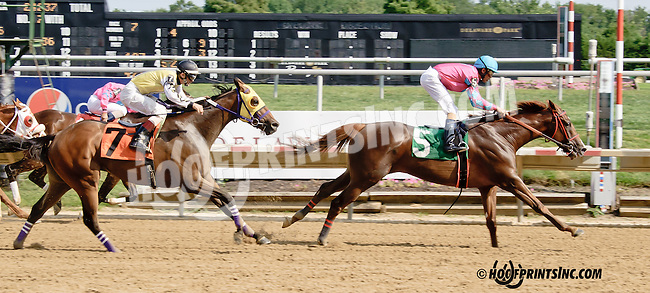 Interchange winning at Delaware Park on 8/9/14