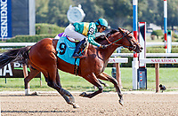 Jockey Jose Ortiz clinches the Saratoga riding title winning aboard Engage (no. 9) in race six, Sept 4.   Engage was trained by Chad Brown.  (Bruce Dudek/Eclipse Sportswire)