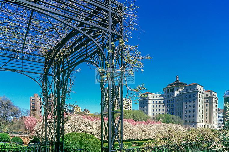 SPRINGTIME BLOSSOMS ARBOR CONSERVATORY GARDEN CENTRAL PARK MANHATTAN NEW YORK CITY USA
