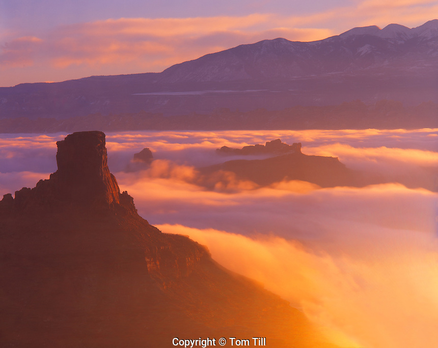Morning Fog at Dead Horse Point, Dead Horse Point State Park, Utah    Colorado River Canyons and La Sal Mountains