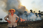 Brazil Amazon Rainforest Settlers Cattle Ranchers Slash & Burn