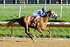 Nouveau Rich winning at Delaware Park on 9/24/12