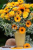 Carl, FLOWERS, photos, SWLA12039,#f# Blumen, Natur, flores, naturaleza