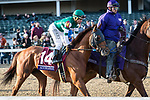 Accelerate (#14.Lookin' At Lucky), Joel Rosario up, wins the Breeders' Cup Classic at Churchill Downs 11.04.18. John Sadler trainer, Hronis Racing LLC owner.
