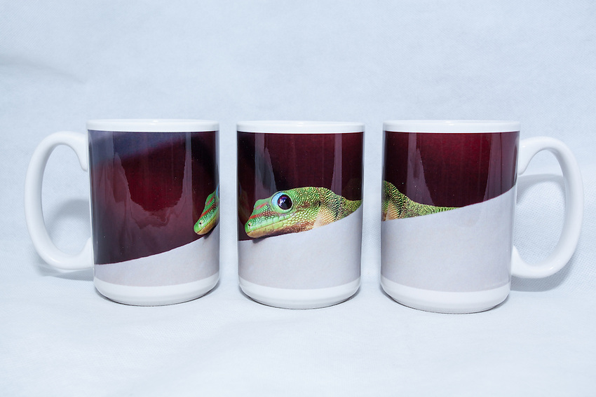 15 oz. Mug   - Gold Dust Gecko - $25 + $6 shipping.<br />