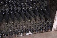 old bottles in the cellar dom rossignol trapet gevrey-chambertin cote de nuits burgundy france
