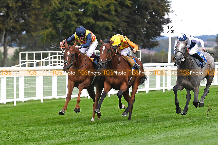 Winner of The British EBF Novice Stakes Second Slip (yellow) ridden by George Wood and trained by James Fanshawe during Horse Racing at Salisbury Racecourse on 11th September 2020