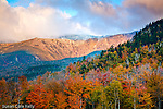 Autumn color at Tuckerman's Ravine on Mount Washington in the Presidential Range in the White Mountain National Forest, Pinkham Notch, NH, USA