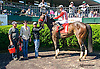 Fit For A Lady winning at Delaware Park on 5/23/15