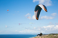62995-00610 Hang Gliders at Torrey Pines Gliderport La Jolla, CA