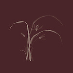 Exquisite artistic floral design in oriental Japanese Zen ink painting style of wild orchid flowers with leaves, illustration on dark red burgundy background