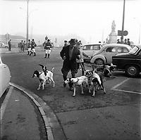 Défilé de la Saint-Hubert, patron des chasseurs,le 3 Novembre 1963. <br /> <br /> préparation d'un défilé pour la fête de Saint-Hubert, patron des chasseurs, en haut des allées Jean-Jaurés à côté de la statue de Riquet.