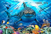 Howard, REALISTIC ANIMALS, REALISTISCHE TIERE, ANIMALES REALISTICOS, paintings,+white shark,++++,GBH879,#A# ,puzzles