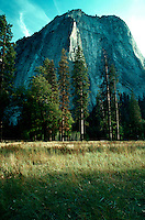 A Yosemite landscape of meadow, trees and mountainour rock formation. Yosemite National Park.