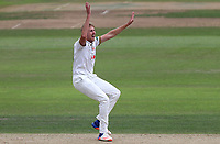 Matt Quinn of Essex appeals for the wicket of Tom Moores during Nottinghamshire CCC vs Essex CCC, Specsavers County Championship Division 1 Cricket at Trent Bridge on 10th September 2018