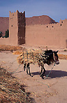 MOROCCO AFRICA