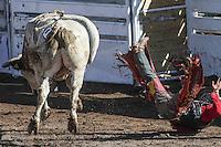Nacional  Rodeo 2016 día3parte1