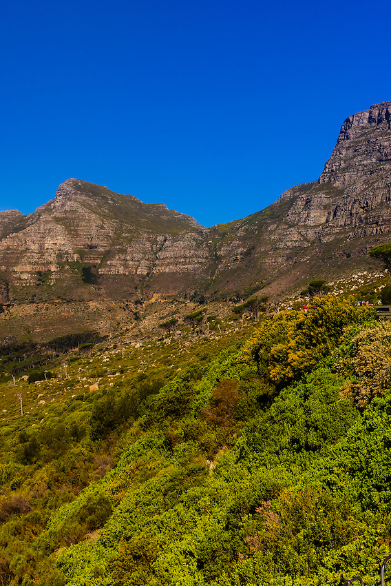 Table Mountain, Cape Town, South Africa.