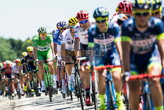 The peloton including Green Jersey Arnaud Demare (FRA) FDJ in action during Stage 6 of the 104th edition of the Tour de France 2017, running 216km from Vesoul to Troyes, France. 6th July 2017.<br /> Picture: ASO/Alex Broadway | Cyclefile<br /> <br /> <br /> All photos usage must carry mandatory copyright credit (&copy; Cyclefile | ASO/Alex Broadway)