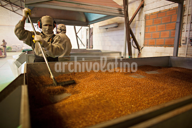 A picture dated April 18, 2013 shows a worker drying quinoa in a quinoa manufacturing plant, Jacha Inti in the city of El Alto in Bolivia.  2013  was declared the international year of Quinoa by the UN.  Bolivia is the main producer of quinoa in the world.