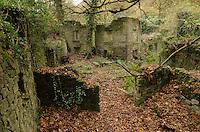 Derelict, Lumsdale, Matlock