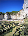 Flamborough Cliffs, Yorkshire