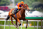 Arcadia CA- April 06:  Beholder with Garrett Gomez aboard wins the 2013 running of the Santa Anita Oaks in Arcadia, CA on April 6, 2013. (Alex Evers/ Eclipse Sportswire)