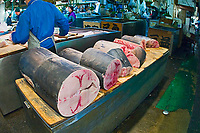 swordfish, Xiphias gladius, for sale at wholesale shop, Tsukiji Fish Market or Tokyo Metropolitan Central Wholesale Market, the world's largest fish market, hadling over 2, 500 tons and over 400 different kind of fresh sea food per day