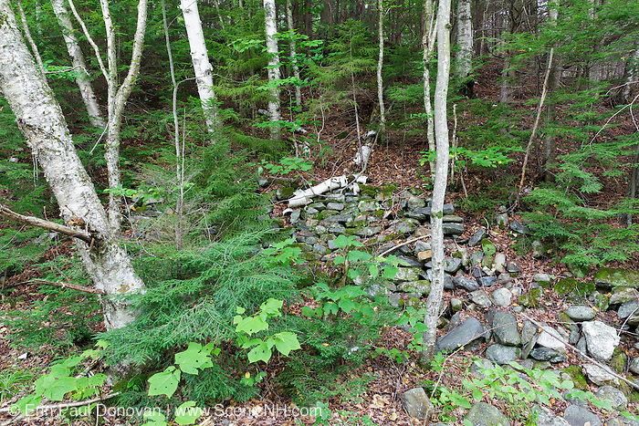 "Remnants of what is believed to be the upper reserve dam, ""Little Dam"", along the Wild Ammonoosuc River in Woodstock, New Hampshire. This log driving dam was used during the late 1800s and early 1900s by the Fall Mountain Paper Company, which later became the International Paper Company, to move logs to the Connecticut River."